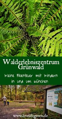 Pinterest-Pin: Walderlebniszentrum Grünwald