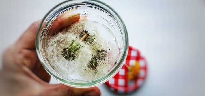 Pusteblumen - Wünsche im Glas zum Verschenken