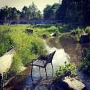 Sommer in Untergiesing Rosengarten Bach