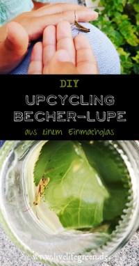Pinterest-Pin: Upcycling-Becher-Lupe aus Einmachglas