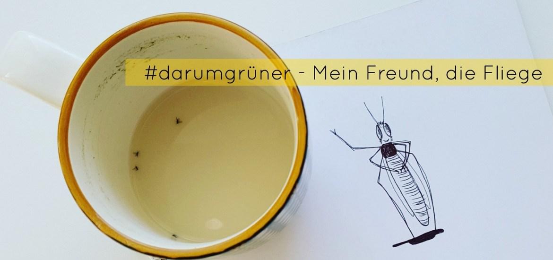 #darumgrüner - Mein Freund die Fliege - Von Trauermücken im Glas und dem Blick durch Kinderaugen