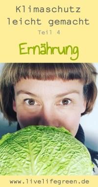 Pinterest-Pin: Klimaschutz leicht gemacht mit nachhaltiger Ernährung