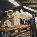 Nachhaltige Winterjacke aus Schafwolle