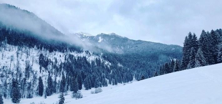 Klima-Advent für mehr Nachhaltigkeit an Weihnachten