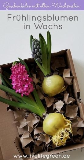 Pinterst-Pin: Frühlingsblumen in Wachs DIY-Geschenkidee mit Kerzenresten