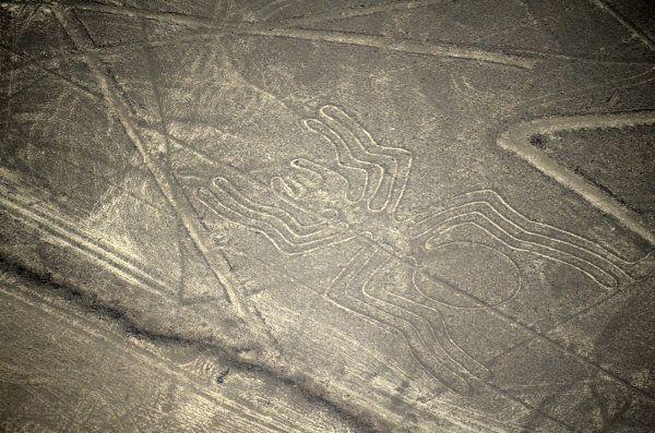 Nazca Lines Spider peru