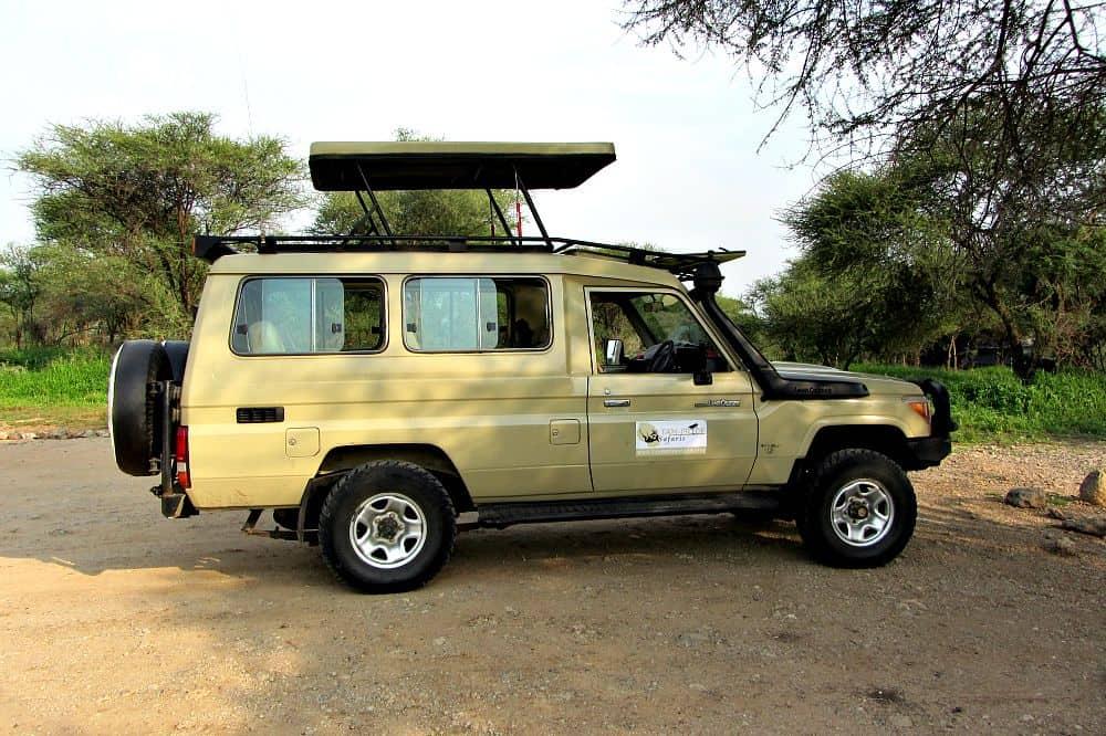 Tan Pride Safari