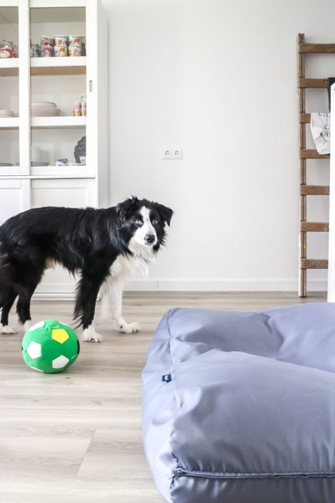At mi casa - hondenkussen - Dog's Companion