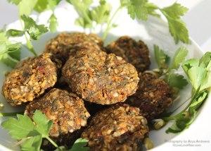 Raw vegan dehydrated falafels