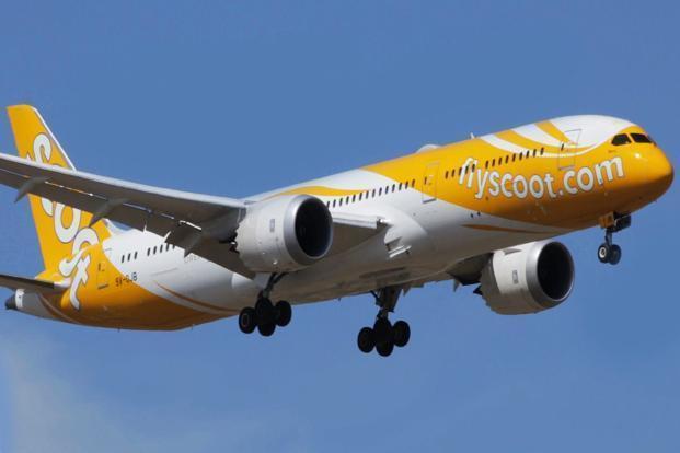 Scoot to start JaipurSingapore flight with Kamascootra plane  Livemint