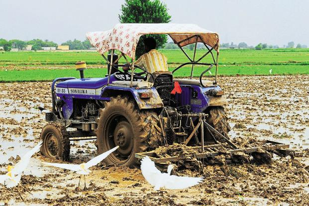 India suffers from low farm productivity due to a host of factors, not in the least, the lack of access to technology. Photo: Ramesh Pathania/Mint
