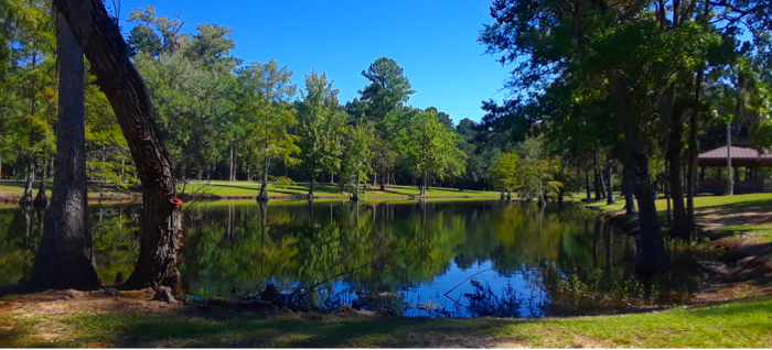 A view of the Live Oak Landing Catch & Release Pond, Stockton, Alabama