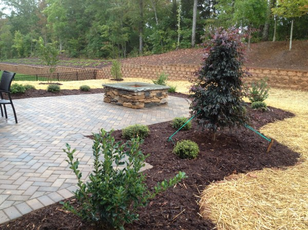 landscaping mint hill nc - live