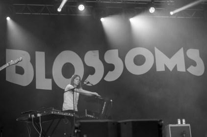 blossoms-eurockeennes-03-07-2016-14