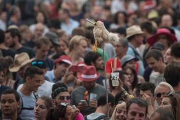 ambiances-paleo-festival-nyon-06
