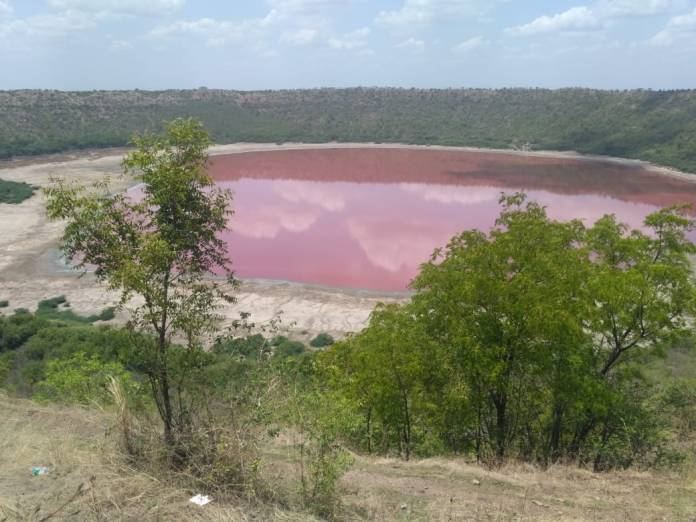 The colour of the 50,000-year old Lonar crater sanctuary lake turned pink