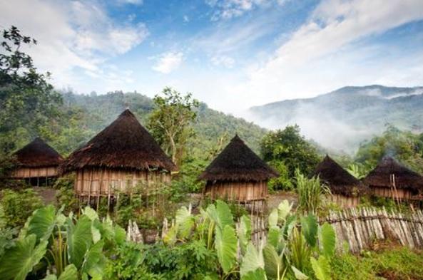 Papua New Guinea native huts
