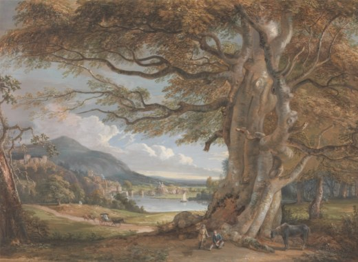 old landscape painting of large tree in Shropshire, England