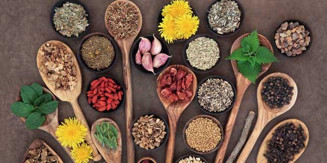 liver-detox-super-food-selecti-73856590