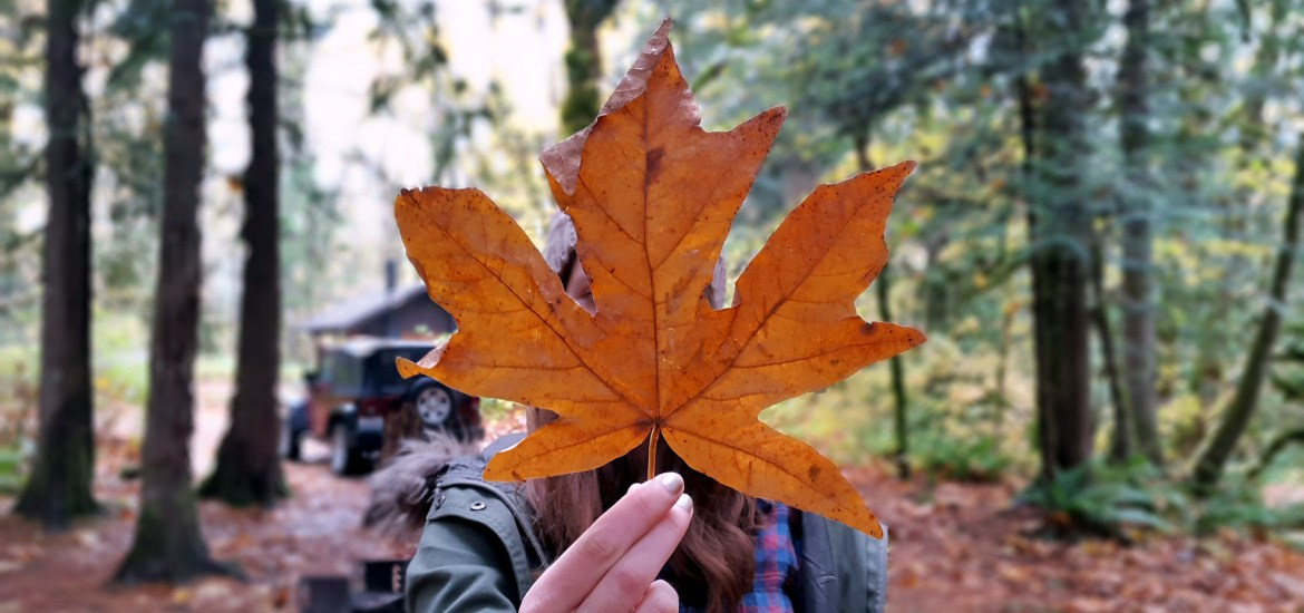 Falling for fall in the Pacific Northwest - LiveRecklessly