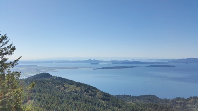 Oyster Dome view