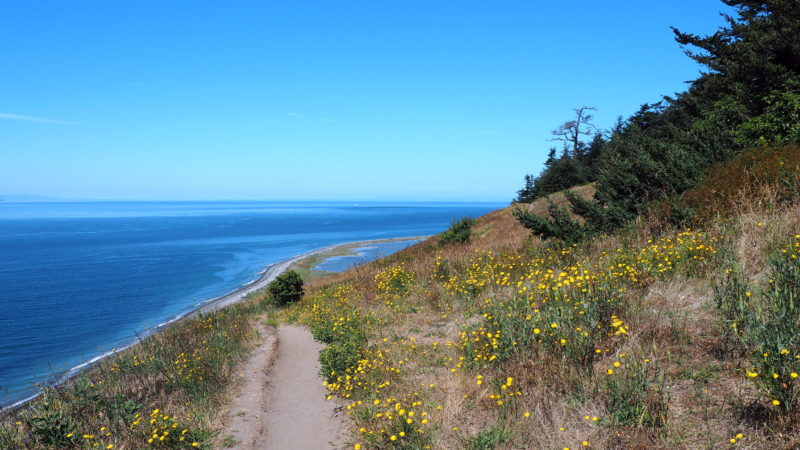 Expat Escapades July 2016 - Ebeys Landing Trail - LiveRecklessly.com