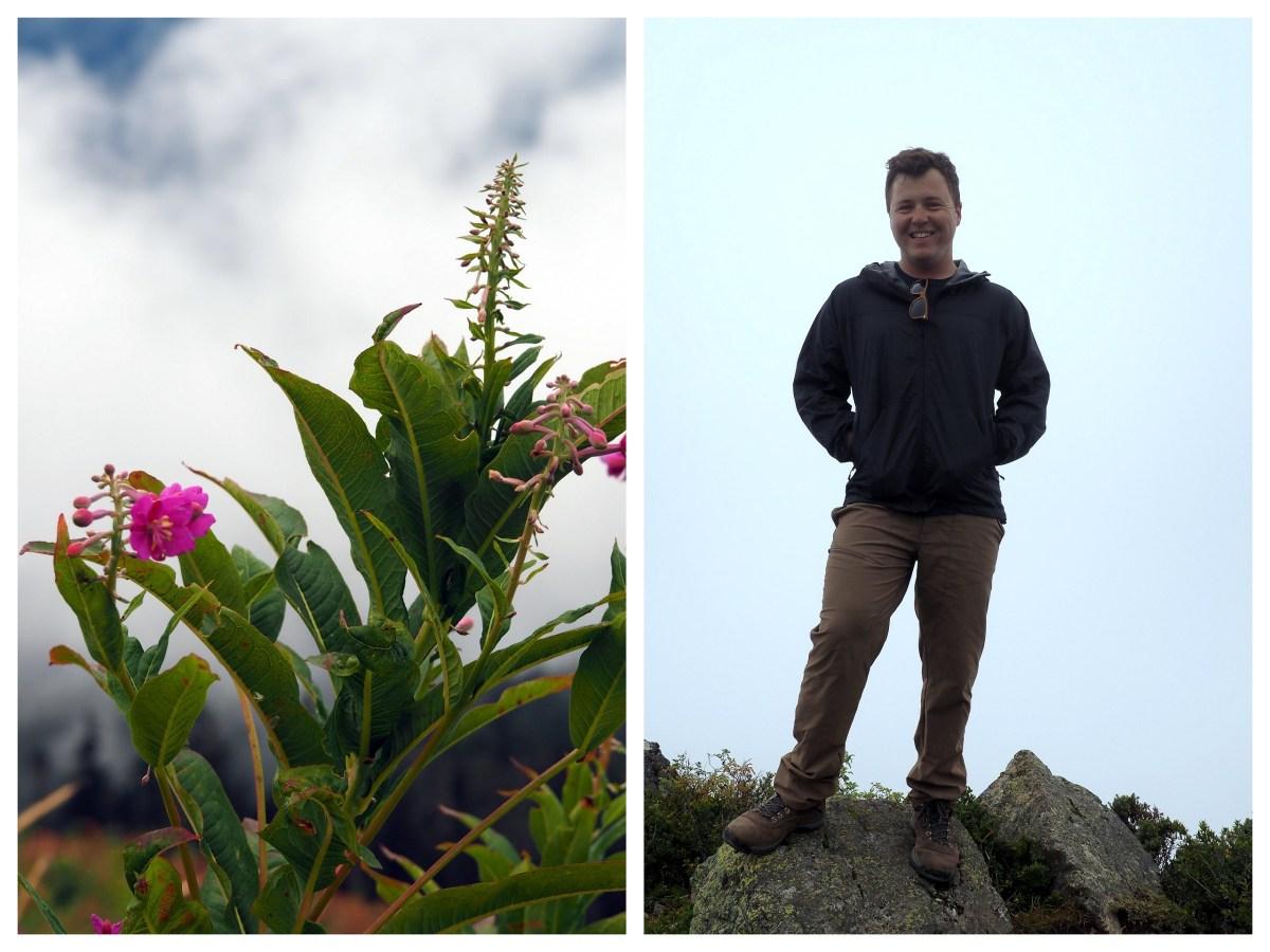 Hike Files: Sauk Mountain, Washington - LiveRecklessly.com