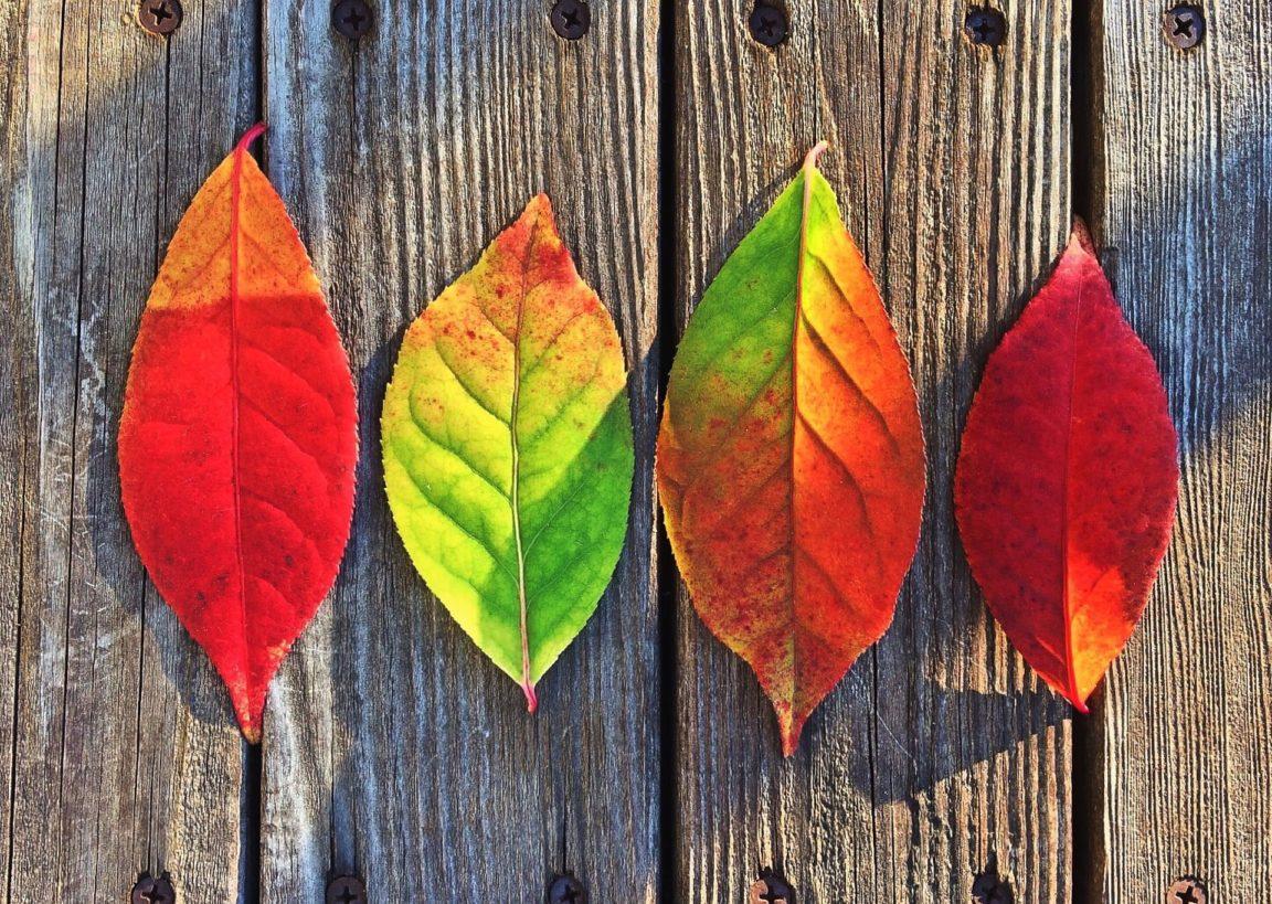 10 fantastic fall weekend getaways in Washington State - LiveRecklessly