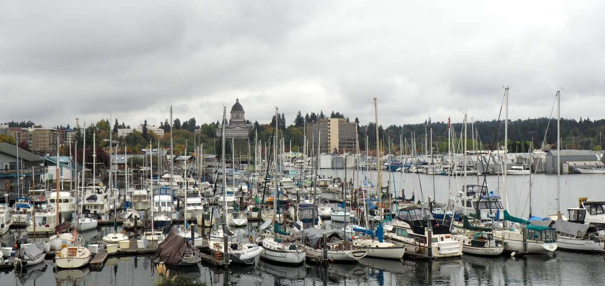 A rainy weekend in Olympia, Washington - LiveRecklessly.com
