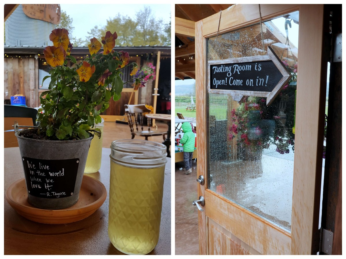 Finnriver Cider Garden - A rainy weekend in Olympia, Washington's funky capital city - LiveRecklessly.com