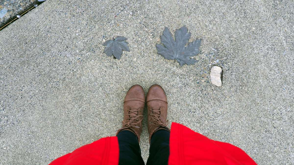 Fun footpaths - Exploring town on a rainy weekend in Olympia, Washington's funky capital city - LiveRecklessly.com