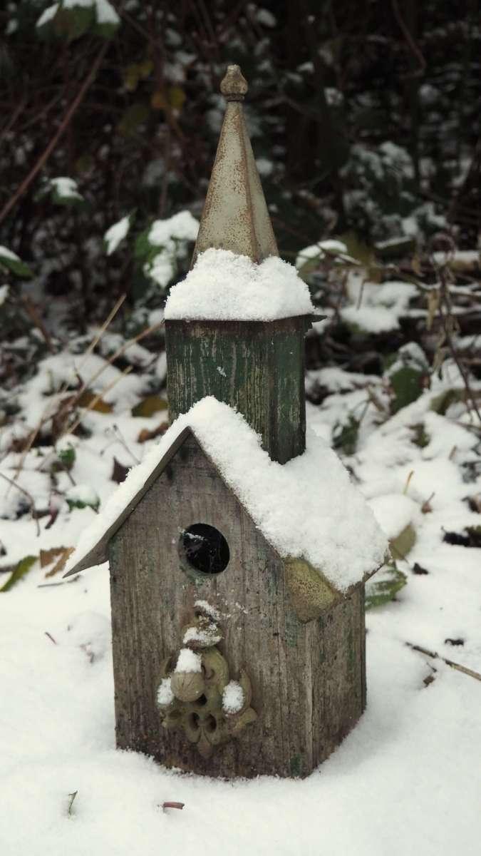 Birdhouse Snow in Anacortes - liverecklessly.com
