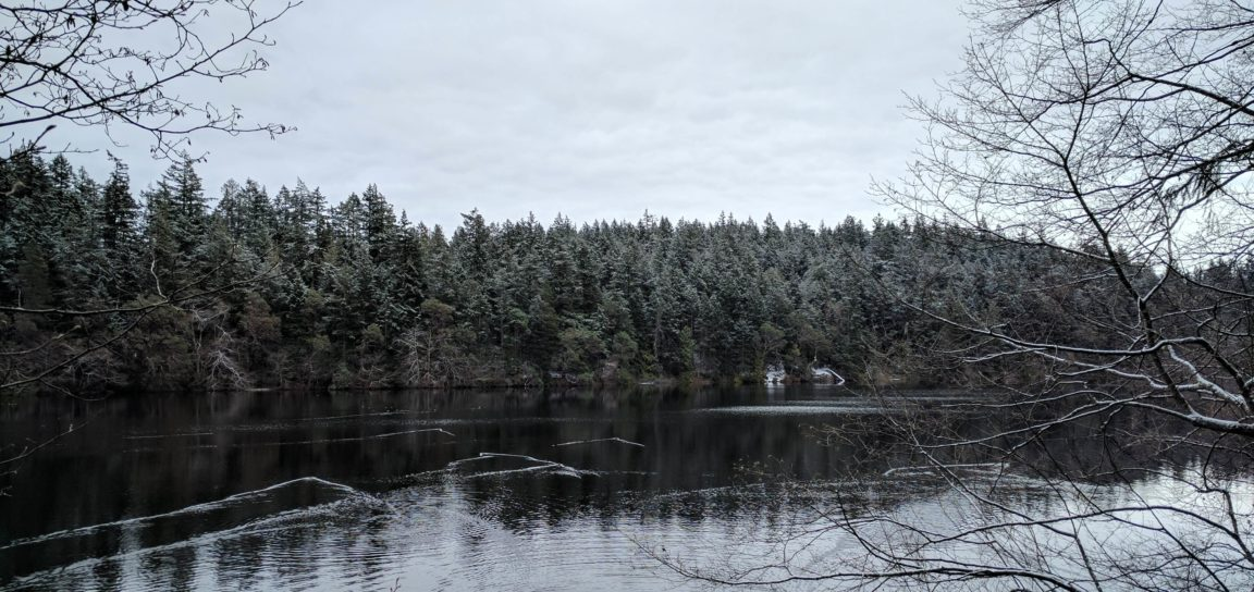 Snow in Anacortes Washington Whistle Lake - Live Recklessly