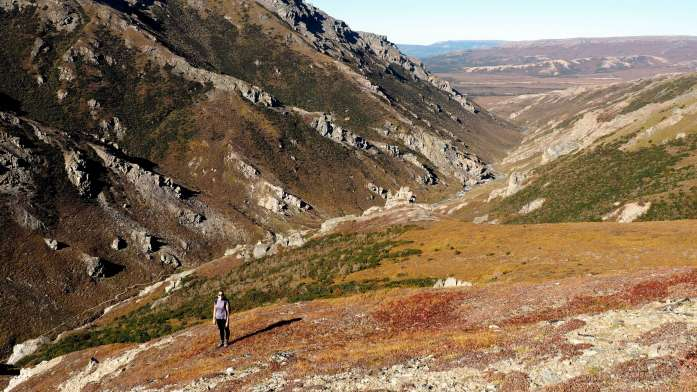 Alaska in Photos - hiking in Denali National Park - Live Recklessly