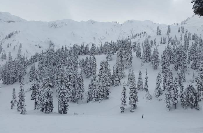 Epic Mt Baker scenery - Live Recklessly