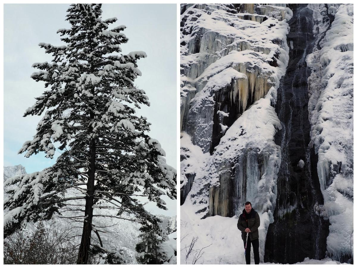 Waterfall and snowy trees by the rustic cabin in Leavenworth Washington - Live Recklessly