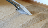 Do You Want A Professionally Cleaned Carpet?   580 Carpet ...