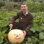 Pumpkin small (2)