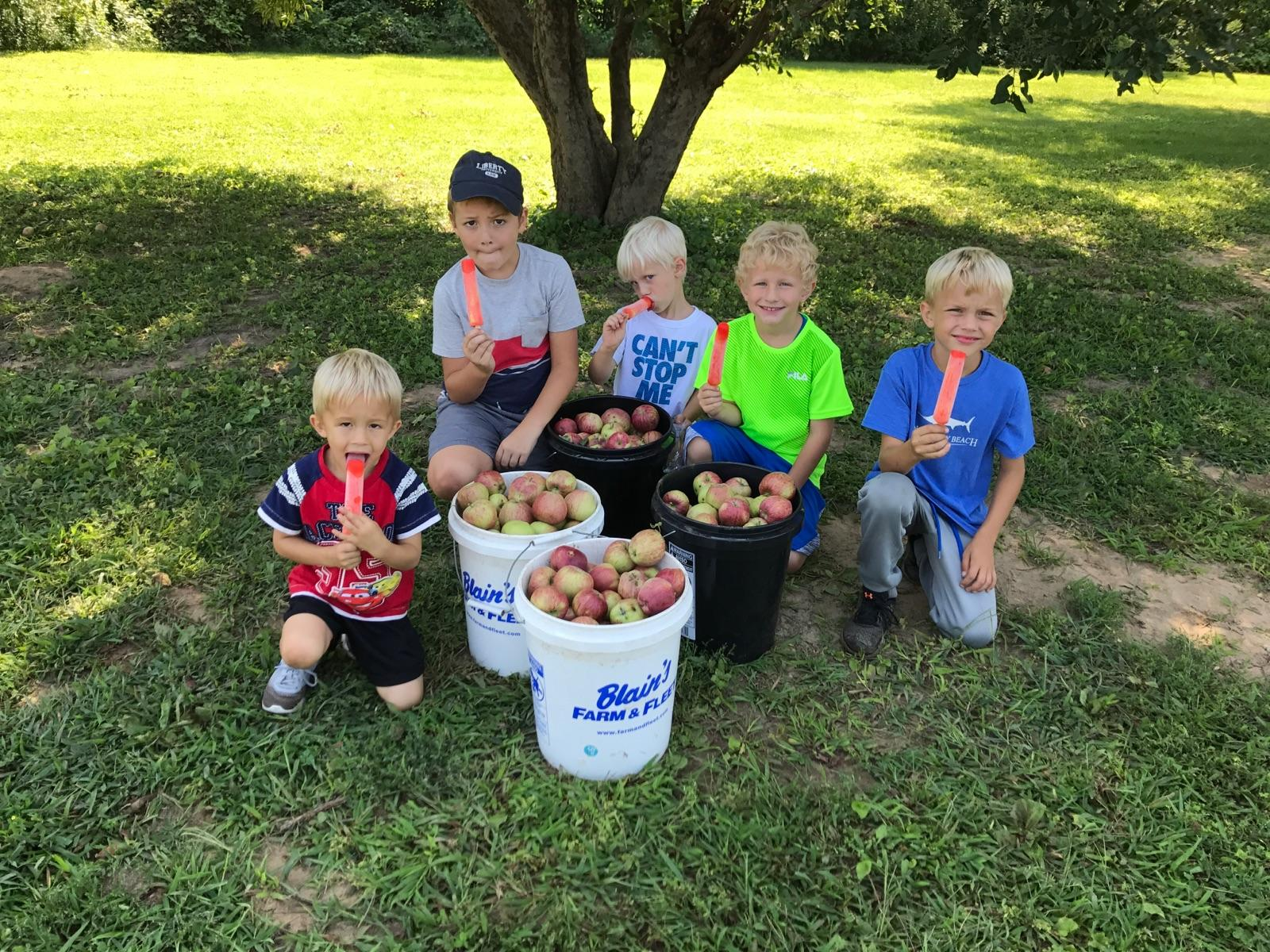 Fall Activity Make Your Own Homemade Applesauce