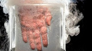 Τι θα συμβεί αν βάλετε το χέρι σας σε υγρό άζωτο (βίντεο)