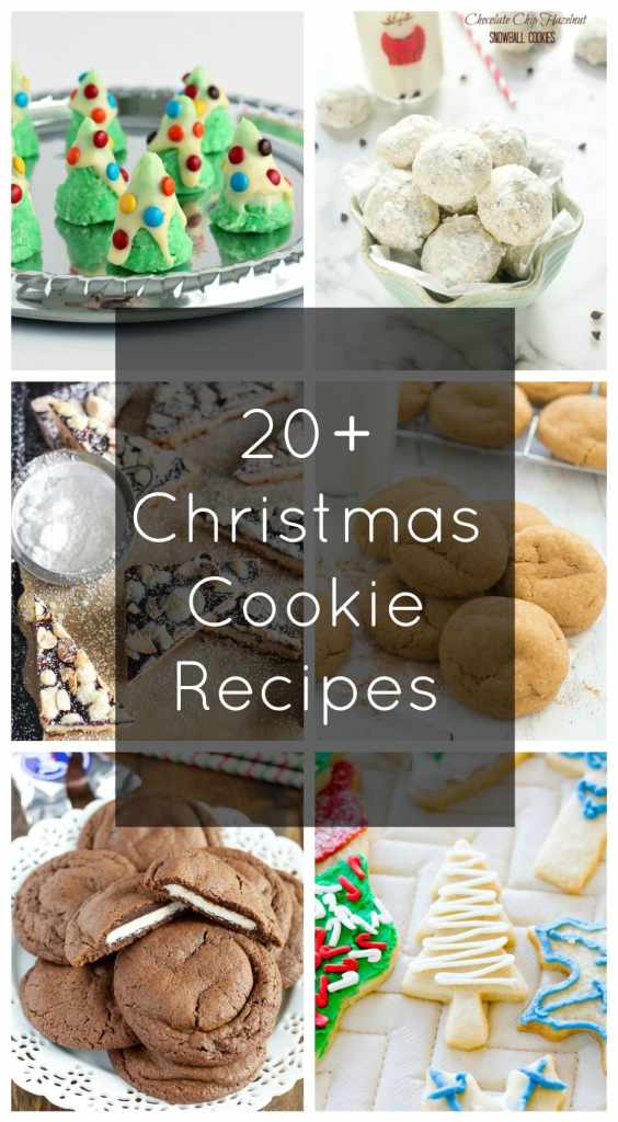 20+ Christmas Cookie Recipes