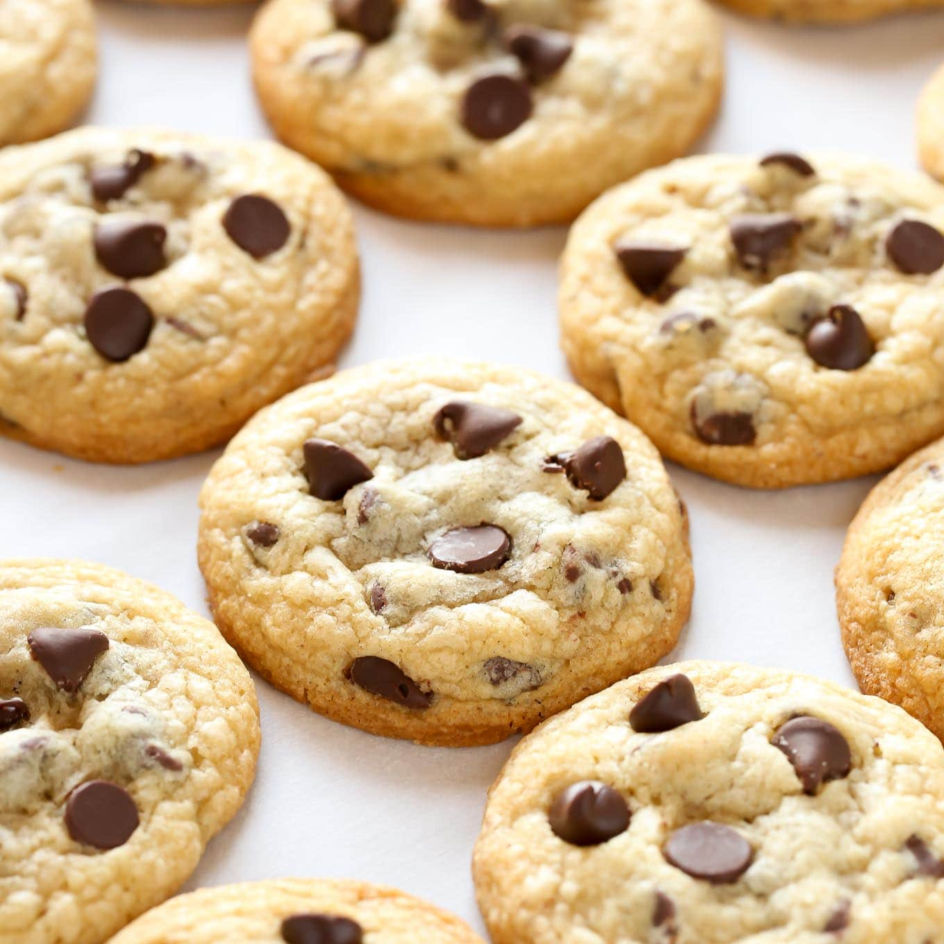 Soft And Chewy Chocolate Chip Cookies Recipe