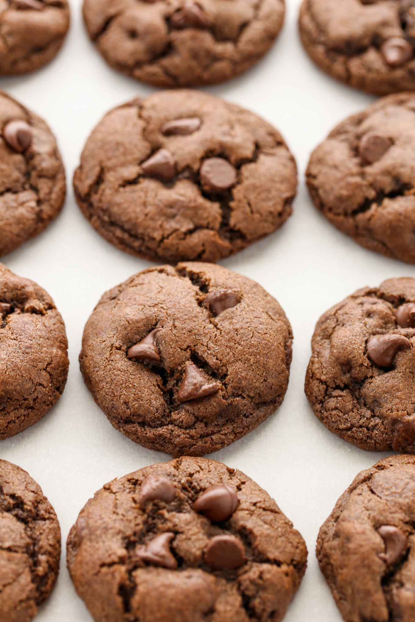 Soft chocolate cookies filled with chocolate chips in every bite. These Double Chocolate Chip Cookies are the perfect dessert for chocolate lovers!