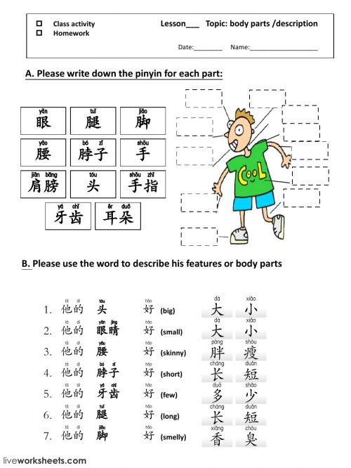 small resolution of Pinyin practice worksheet