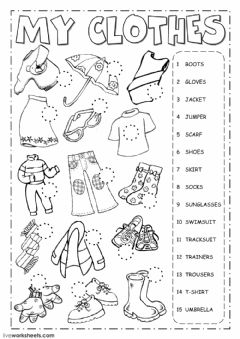 The clothes Interactive worksheets
