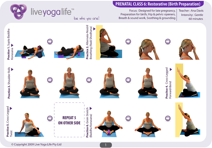 chair exercises for seniors pdf old barber prenatal yoga complete set (classes 1 to 7) | live life
