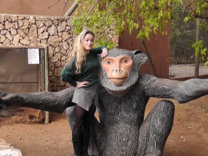 Monkey-sanctuary-hartbeespoort