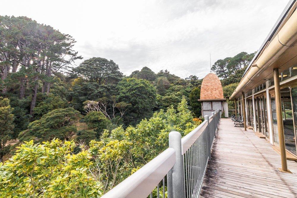 wellington-botanic-gardens-tree-house-3