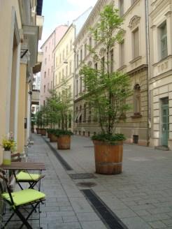 Bike Bake courtyard