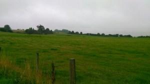 Former site of Tennyson estate